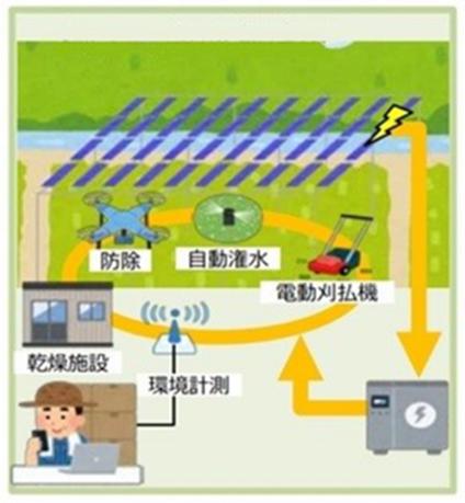 当社が目指す営農型発電事業のイメージ02