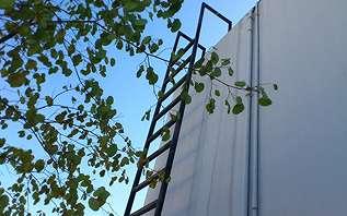 倉庫の側面に設置した梯子